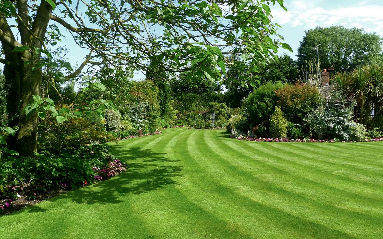 garden services lawn care